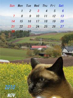 2010年11月小カレンダー.jpg