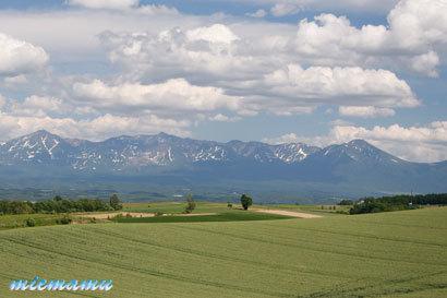 ルベシベからの丘と山並み〜6月の美瑛1185.jpg