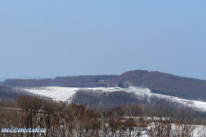 北西の丘から〜3月の美瑛1263.jpg