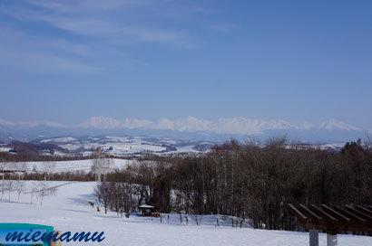北西の丘から〜3月の美瑛2876.jpg