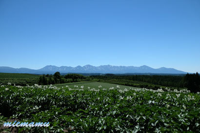 就実の丘から〜7月0023.jpg