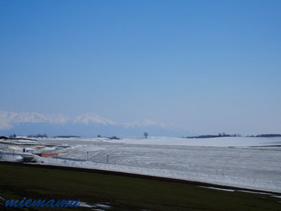 雪解けの模様〜3月の美瑛3290004.jpg